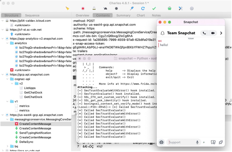 Secura blog i OS Apps Pentesting 5